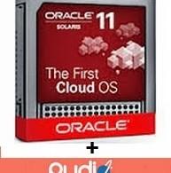 Oracle solaris cloud storage