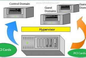 IO Domain