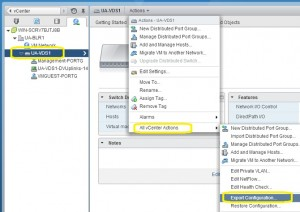 Export VDS configuration using web-client