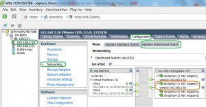 ESXi host Level Networking view