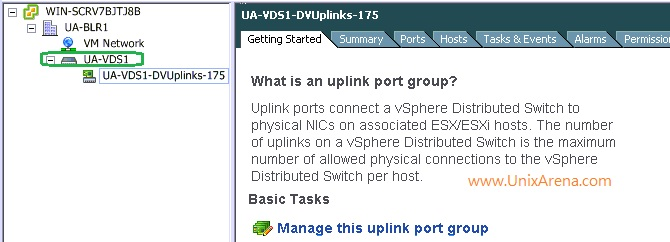 VDS switch and uplinks ports
