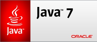 Oracle VM Java opens