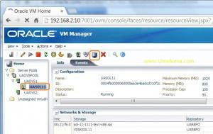 oracle VM Guest console