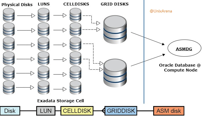 Exadata storage cell disks