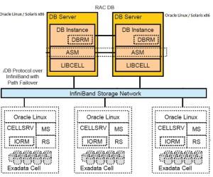 Software architecture- exadata