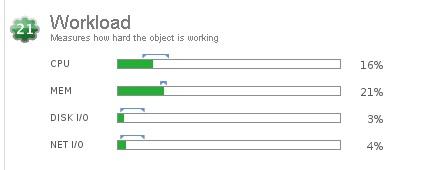 Workload VM