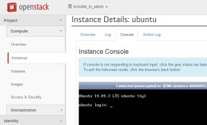 Instance Console