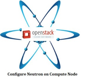 Configure Neutron on Compute Node