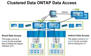 Clustered Data ONTAP Data Access