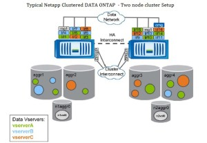 Data ONTAP Cluster
