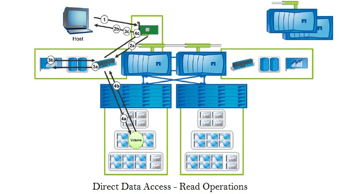 Direct Data Access - Read Operations
