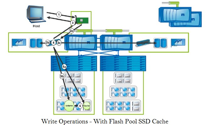 Netapp Write Operations - Flash pool SSD cache