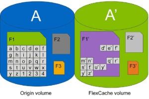 FlexCache Volume