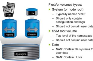 NetApp SVM FlexVol