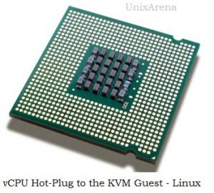 vCPU Hot-plug KVM