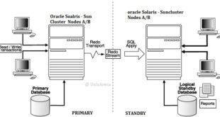 Oracle Datagarud - Sun Cluster Setup